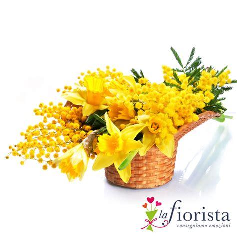 fiori e mimose cestino con mimosa e fiori gialli festa della donna