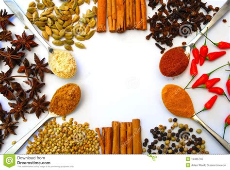 Spice Kitchen Design different ground and whole spice in border stock image