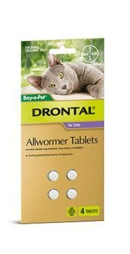 Bayer Drontal Cat 1 Tablet 8 best cat worming flea tick treatment images on
