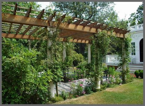 a young conservative regular pergola designs