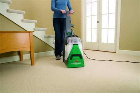 how to deep clean your carpet hirerush blog how to remove pet stains from carpet hirerush blog