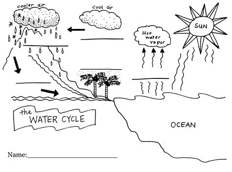 Water Cycle Worksheet by Water Cycle Worksheets For Second Graders Water Cycle Worksheetsworksheetswater Worksheets