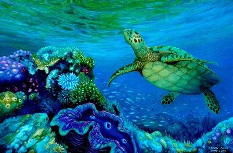 edoen kang artwork green turtle and clam original painting sea