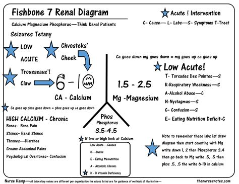 lab value diagram this is the seventh of my series explaining the renal