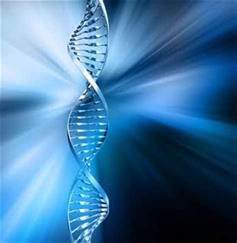 dna activation ~ how to experience a light rewrite | wake