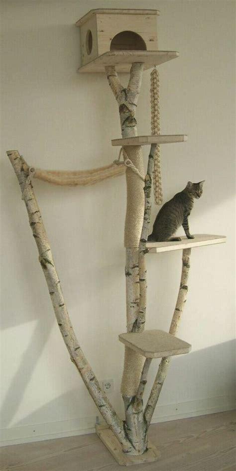 stalltüren selber bauen kratzbaum selber bauen 67 ideen und bauanleitungen