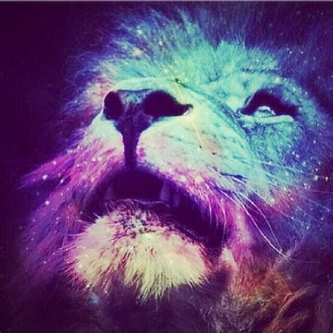imagenes hipster de leones lion galaxy wallpaper wallpapersafari