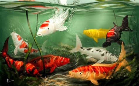 koi live wallpaper for windows 7 koi live wallpaper for pc wallpapersafari