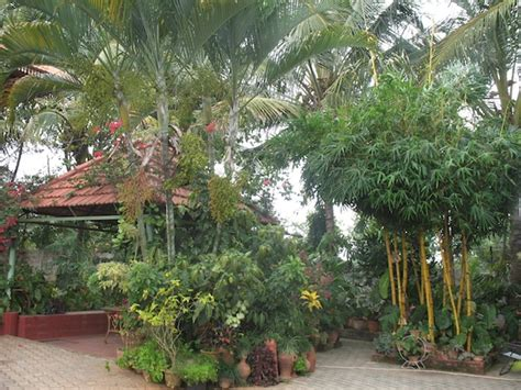 [indian home garden ideas]   28 images   indian attractive landscape design home landscaping