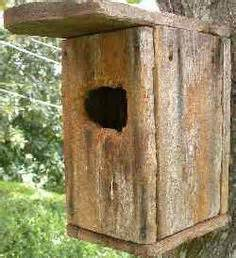1000 images about bird feeders diy on pinterest bird