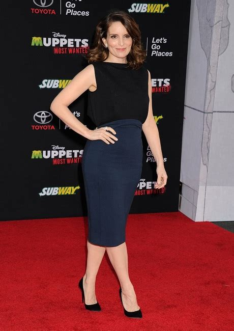 tina fey net worth tina fey net worth is expected to increase significantly