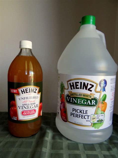 Distilled Vinegar For Detox by 1000 Ideas About Heinz Apple Cider Vinegar On