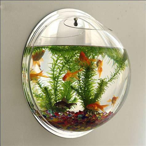 types of aquariums wall type mini aquarium fish bowl ontario acrylics and