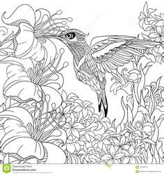 high quality coloring pages for adults 1000 images about coloring book on coloring