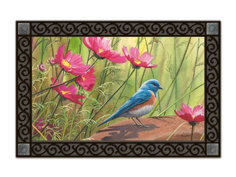 Pretty Doormats Sittin Pretty Bird Matmates Animal Indoor