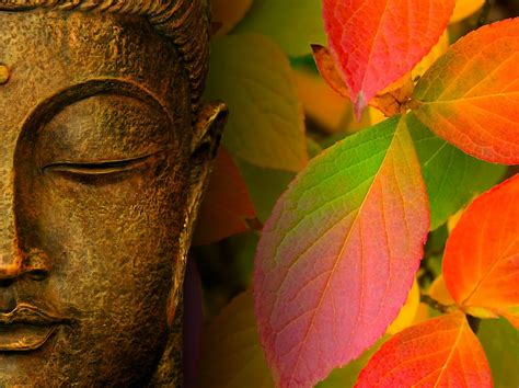 62 wallpaper autumn macbook air buddha wallpapers buddhism backgrounds buddha quotes