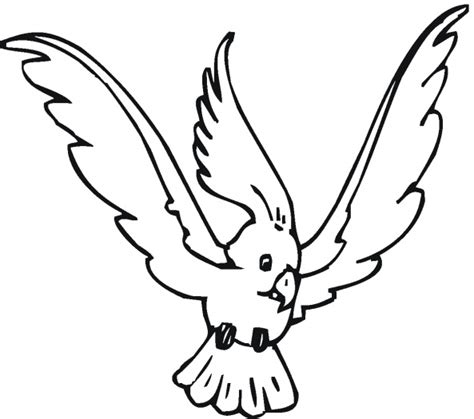 bird coloring pages umbrella bird coloring pages kids
