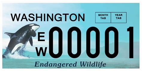 Vanity Plates Washington by Fish And Wildlife Background License Plates Washington
