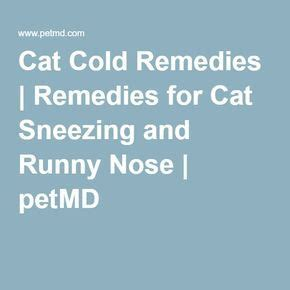 Runny Nose And Sneezing Effects Of Juice Detox by Best 25 Runny Nose Remedies Ideas On Runny
