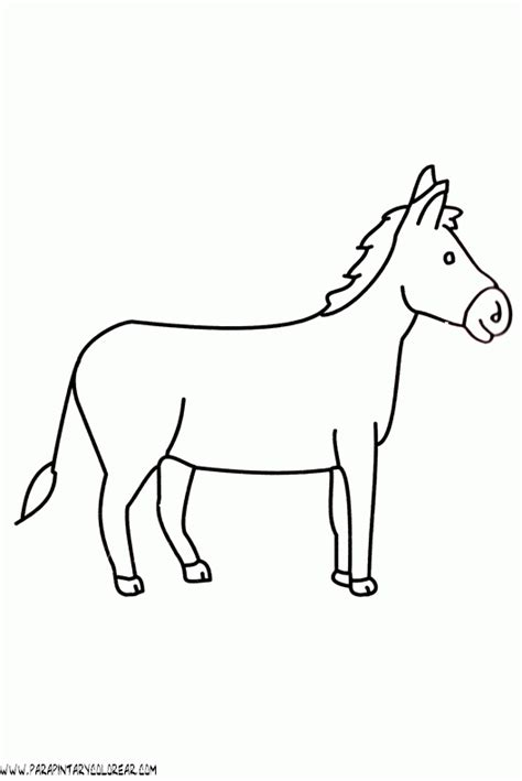 imagenes para colorear burro dibujos para colorear de burros 005