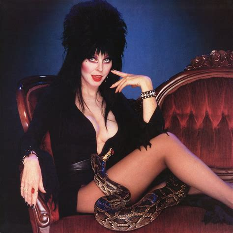 nights and mares femme macabre line books elvira images elvira hd wallpaper and background photos