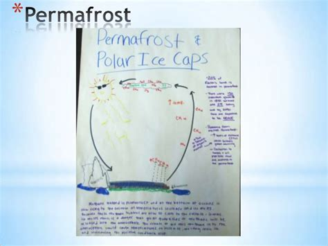 membuat poster global warming consequences of global warming poster winners