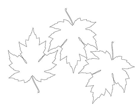 free maple leaf template holiday seasonal pinterest