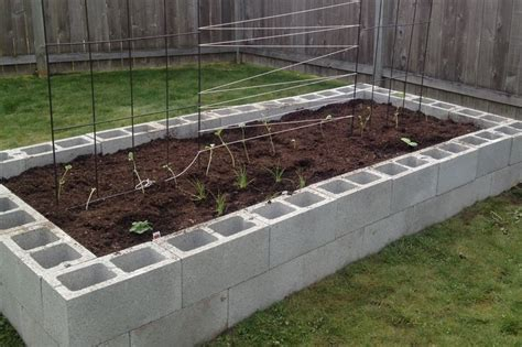 Cinder Block Raised Bed by Cinder Block Raised Garden Bed Stuff I D At Home