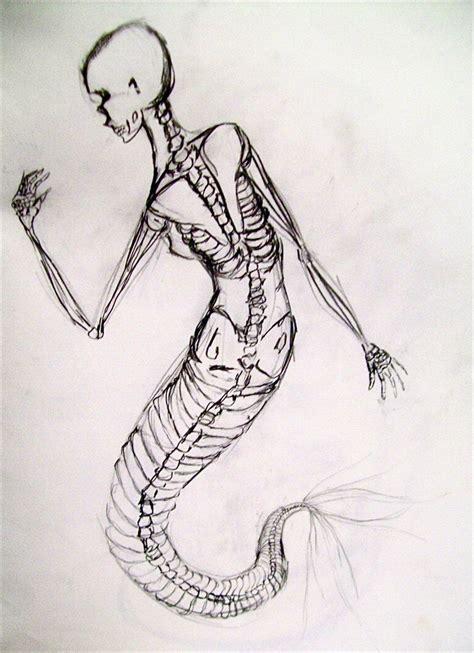 mermaid skeleton tattoo mermaid skeleton sketches search mermaid