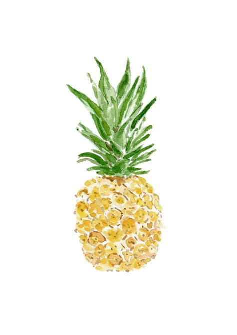 pineapple watercolor painting www pixshark images galleries with a bite