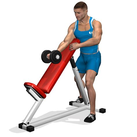 incline bench muscles standing one arm dumbbell curl over incline bench involved
