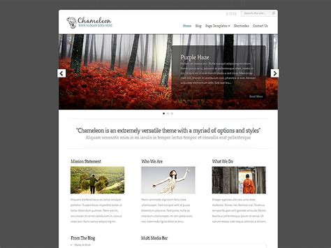 elegant themes gallery page chameleon wordpress theme