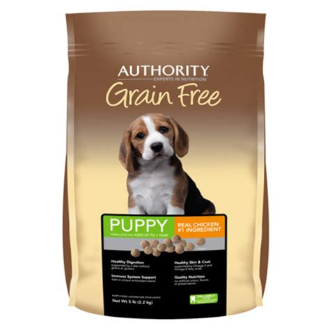 authority food best grain free foods that your will absolutely