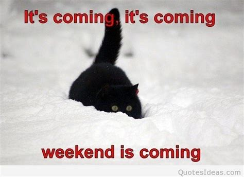 it s coming are you quotes about the coming weekend quotesgram
