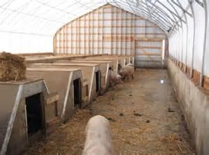 Hog Barns For Sale Greenhouse Hoghouse