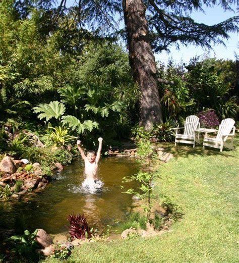 backyard swimming hole backyard swimming hole 28 images this guy turned an