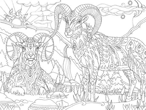 psychedelic elephant coloring pages 897 beste afbeeldingen over animals colouring pages op