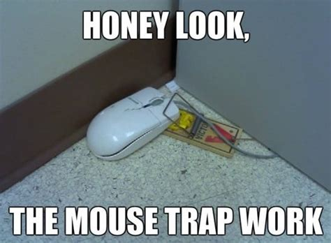 Trap Memes - mouse trap funny quotes quotesgram