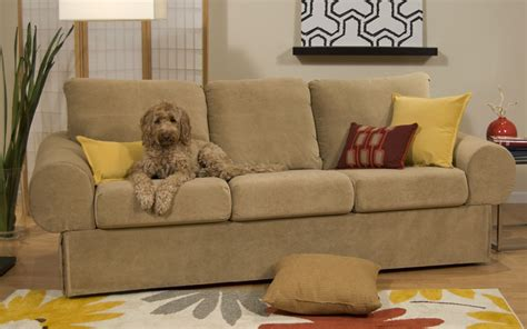 pet friendly sofa material best fabric couches for dogs homesfeed