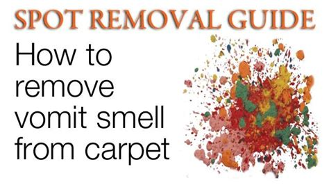 how to clean vomit from couch 17 best images about home and garden ideas on pinterest