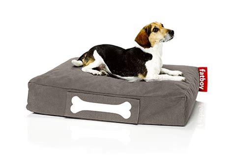 cuscini x cani doggielounge cuscino per cani tutto ze