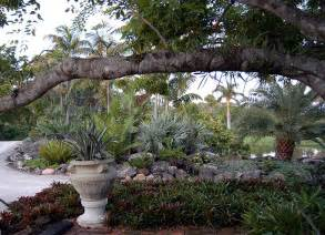 drought tolerant palm and bromeliad landscape