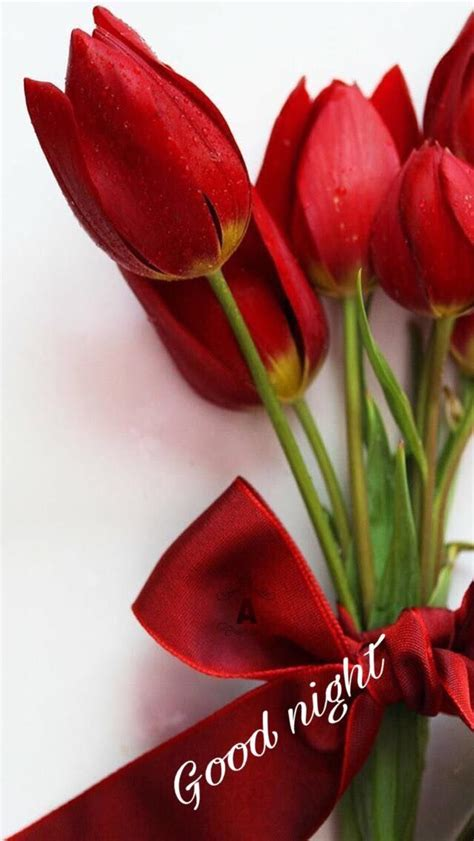 Sulap Five In One Flower pin by rori369 on ليلة سعيدة islam