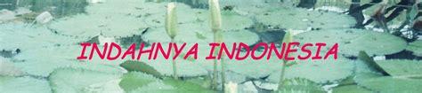 Nego Harga Kelley cinta indonesia magazine email anda