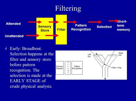 evidence pattern recognition cognitive psychology attention ppt video online download