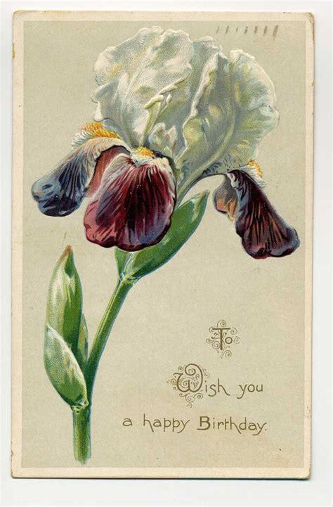 pin by amanda n on iris iris vintage birthday card iris вышевка лентоми