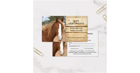 Horse Riding Lessons Gift Certificate Template Zazzle Horseback Gift Certificate Template