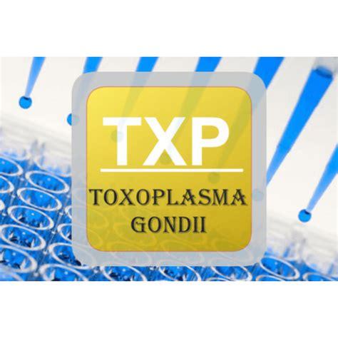 toxo test toxoplasma elisa toxo igm txp e b02 united immunoassay