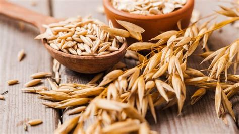 alimentos ricos en carbohidratos 8 alimentos ricos en carbohidratos
