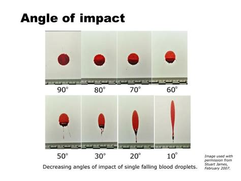bloodstain pattern analysis research ppt bloodstain pattern analysis powerpoint presentation